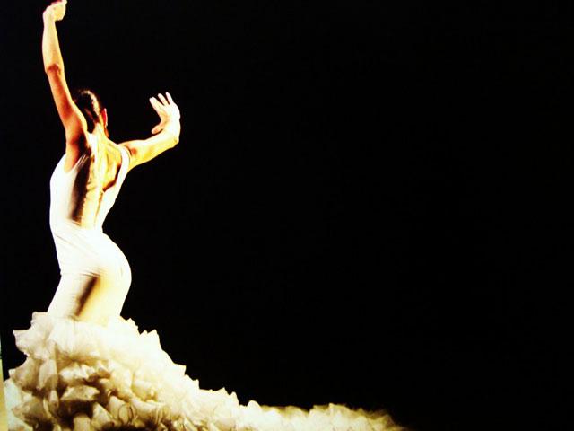 Chicago Flamenco - World Music Wednesday